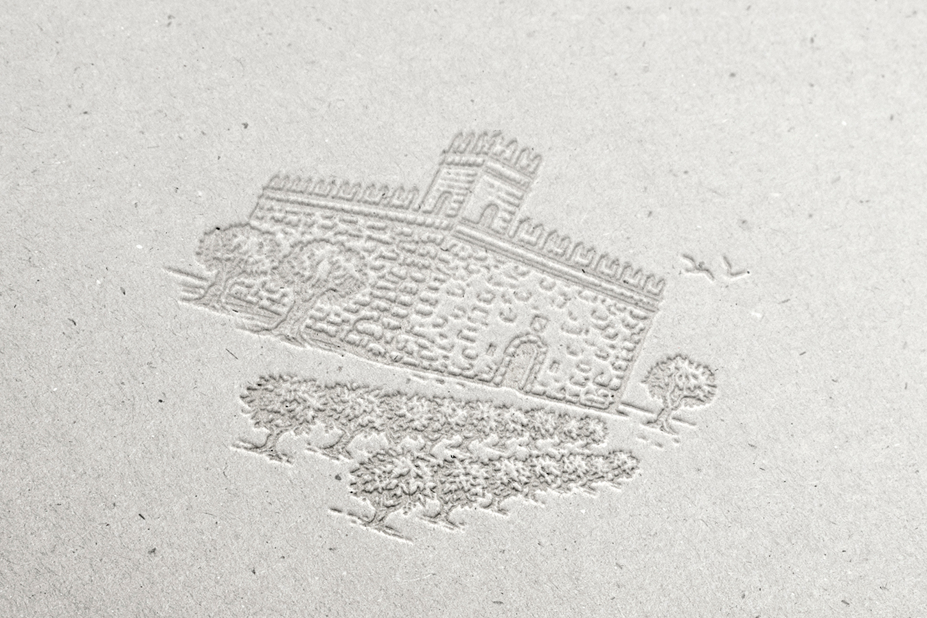 Castillo Coloma identidad - Eva Arias Graphic Studio