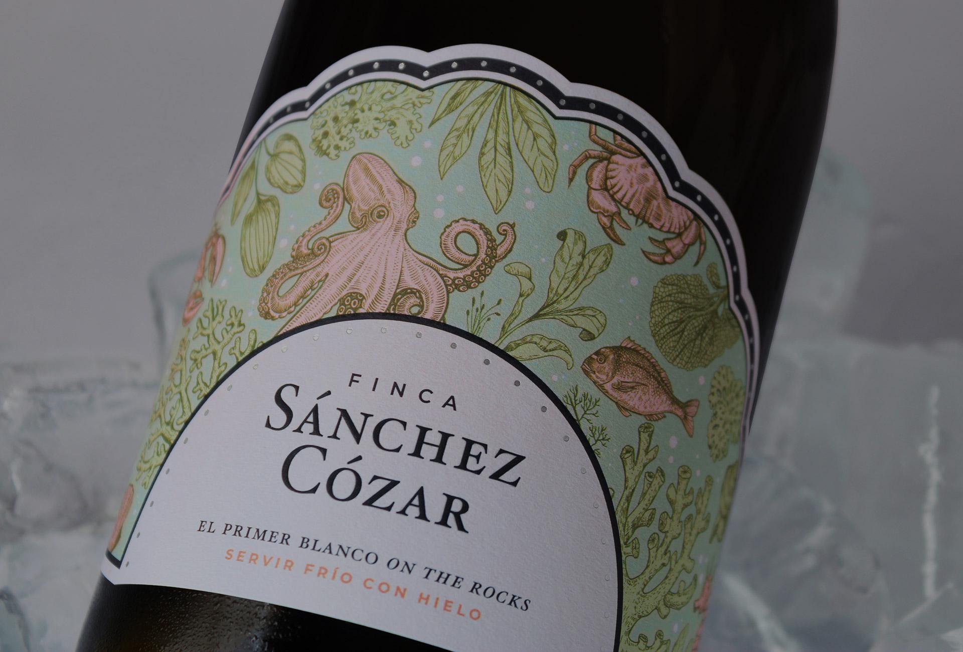Packaging de vinos